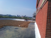Business Development Center Roof Repair Chattanooga